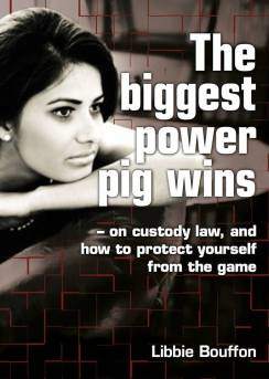 The biggest pig wins book.how to protect yourself from family law